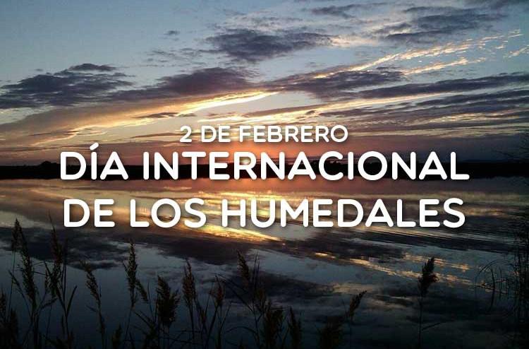 2-de-febrero-Dia-Internacional-de-los-Humedales