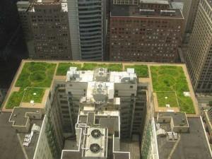 Huerta urbana en la azotea de un edificio en una gran ciudad