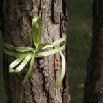 Regalos ecológicos para una navidad verde