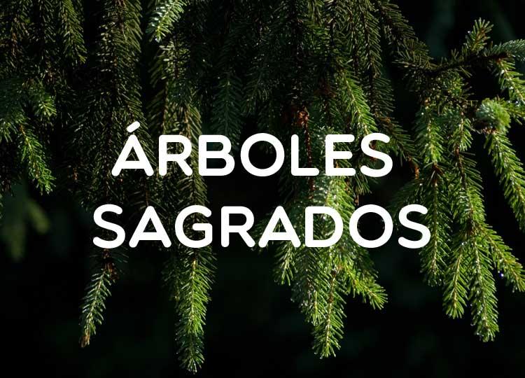 Árboles sagrados