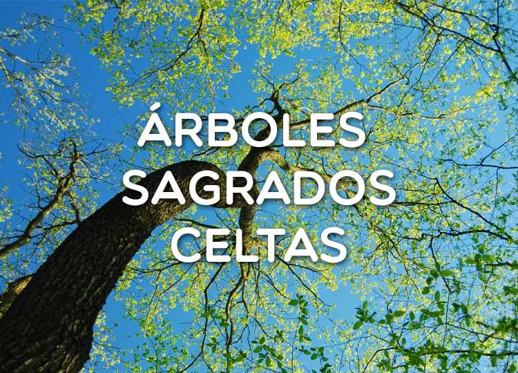 Árboles Sagrados celtas