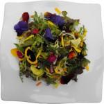 Comer fuera de forma saludable, restaurantes ecológicos.