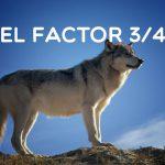 EL FACTOR 3/4