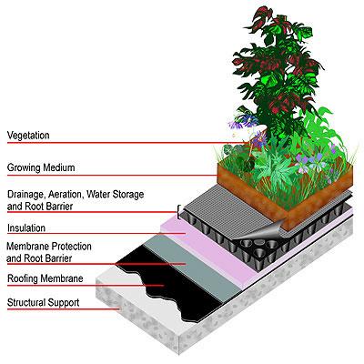Esquema de cómo es una cubierta vegetal en la azotea de un edificio
