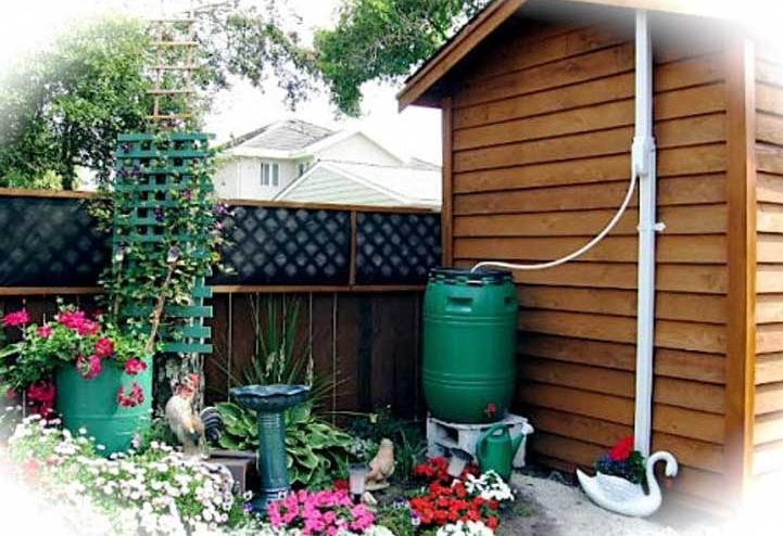 instalacion-para-recoger-agua-de-lluvia-con-un-barril-y-usarla-para-el-riego