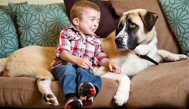 Owen y Haatchi - síndrome de Schwartz Jampel