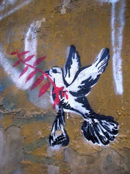 Paloma de la paz con una rama de olivo - grafitti - arte urbano