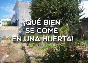 La huerta del Rey Moro. Una huerta urbana en Sevilla.